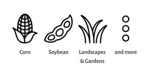 Corn, Soybeans, Landscapes, Gardens and More