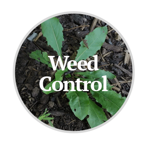 Weed Control Field Products